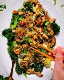 Paleo Chicken Stir-Fry with Cabbage and Sweet Potato Noodles Reicpe (Japchae)