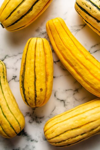 What is delicata squash - a photo of the squash image